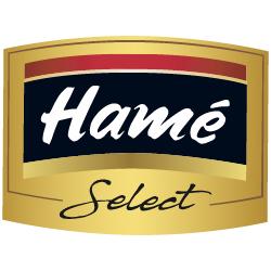 Logo Hame-01